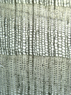 PINACEAE Abies alba