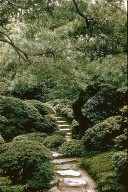 Japanese Gardens and Landscape