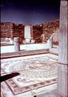 Delos: House of Dolphins