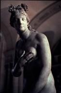 Capitoline Aphrodite Type