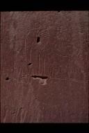 Neolithic Elephant