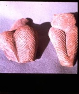 Pottery Fragments: Incised Decorations