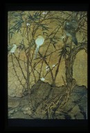 Birds in Bamboo and Plum Thicket