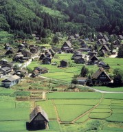 Gassho Style Houses in the Village of Ogimachi