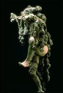 Lichen Unto a Sponge