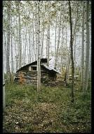 Sapling House
