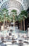 World Financial Center: Winter Garden