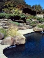 Thomas Mudd Garden