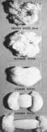Key Stages of Processing Wool