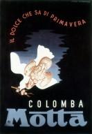 Colomba Motta