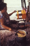 Woman Reeling Silk From Cocoons