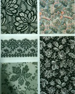 Lace and Eyelet Prints