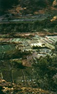 Farmland on the High Plains of Guatemala