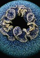 Blue Iris Vessel