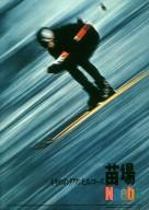 Neba Ski Resort Poster