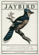 Don't Be Feeling Naked as a Jaybird - Brigham's Book of Birds Poster