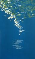 Sea Grant Lecture Poster