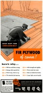 Douglas Fir Plywood Advertisement