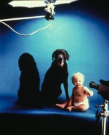 With Dogs and Babies-Actor's Nightmare