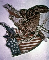Tapestry of the American Eagle