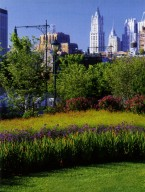 Hudson River Park: TriBeCa Segment