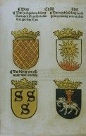 Book on Heraldry