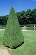 Ch¿teau de Vaux le Vicomte: Gardens