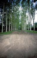 Versailles [site]