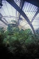 Kew Gardens; Palm House