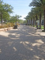 Santa Monica College Campus Quad [landscape architecture]