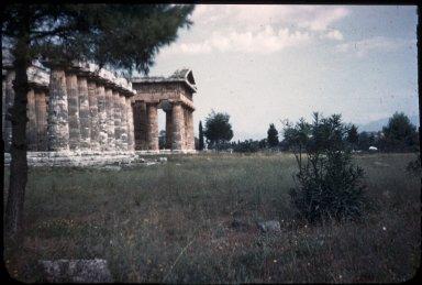 Temple of Hera I (Basilica)
