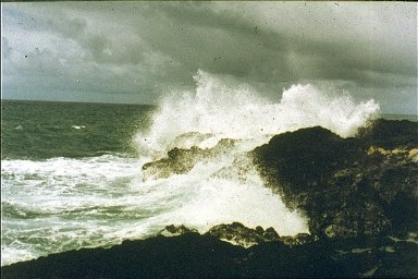 Coastal Island of Hawaii