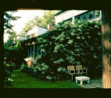 Otsonpesa Row Houses