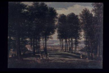 Deer, Mt. Storm Park, Cincinnati