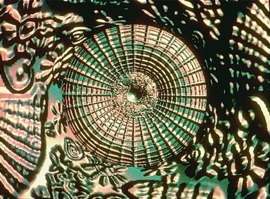 Computer/Art/Video Interface/Man/Machine/Art-the world of David Miller
