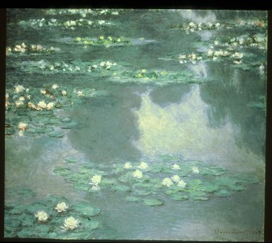 Water Lilies I