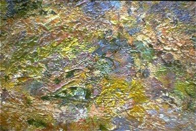 Stone Pine at Antibes