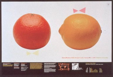 AIGA Lecture Poster