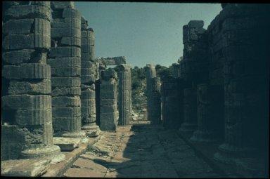 Temple of Apollo Epicurius