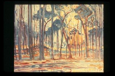 Woods Near Oele