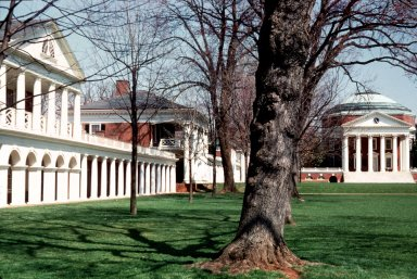 University of Virginia: Pavilion VII