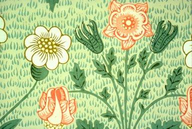 Daisy Wallpaper Series: Light Green