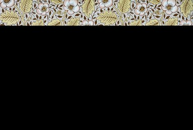 Christchurch Wallpaper Series: White