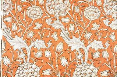 Wild Tulip Wallpaper Series: Pink