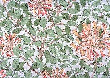 Honeysuckle Wallpaper Series: Cream