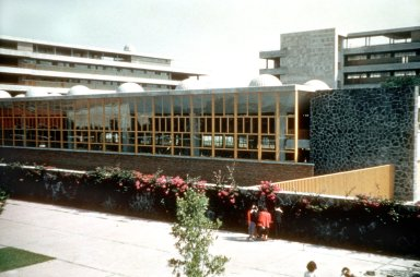 National University of Mexico: Engineering School