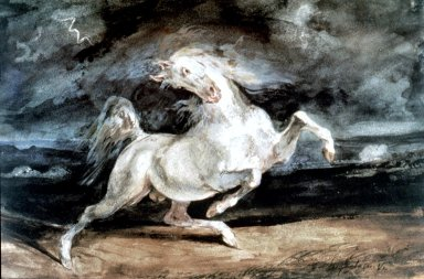 Horse Frightened