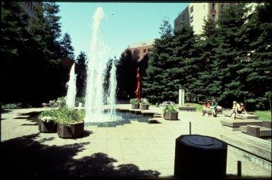 TransAmerica Tower: Redwood Park