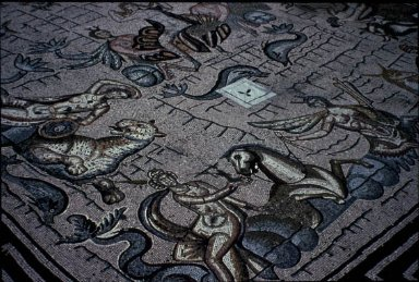 Baths of Neptune: Bath Mosaic