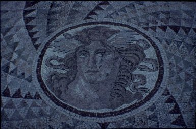 Optical Mosaic with Medusa